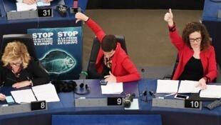Membros do Parlamento Europeu durante a votação sobre a pesca eléctrica.Strasbourg.16 de Janeiro de 2018.