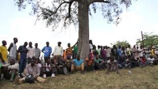 Un groupe d'anciens rebelles M23 dans le camp de Bihanga, le 8 février 2017.