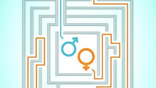 Trang bìa báo cáo Ngân Hàng Thế Giới về Quyền bình đẳng nam nữ trong việc làm, năm 2019