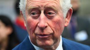 英國王儲查爾斯王子 近照