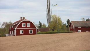 Exploitation agricole dans la région du lac Siljan. Malgré le climat peu favorable, environ 20% des terres agricoles suédoises sont dévolues au biologique, contre un peu plus de 7% dans l'UE (chiffres 2017, Eurostat).