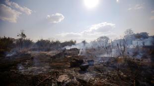 Le nombre de départs de feux en Amazonie a augmenté de 83 % cette année au Brésil.