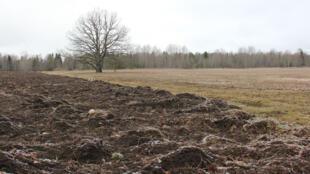L'Estonie veille à la qualité de ses sols arables.