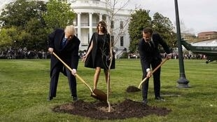U.S. President Donald Trump and French President Emmanuel Macron shovel dirt onto a freshly planted oak tree as first lady Melania Trump watches on the South Lawn of the White House in Washington, U.S., April 23, 2018.