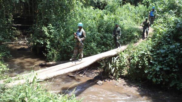Nord-Kivu, RDC, le 05 février 2015. Patrouille conjointe Monusco et FARDC dans la forêt de Kahumiro.