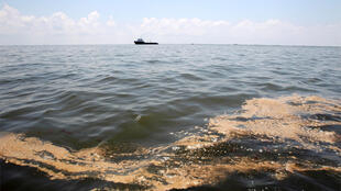 A patch of oil from the Deepwater Horizon wellhead floats on the surface of the water in Barataria Bay, Louisiana