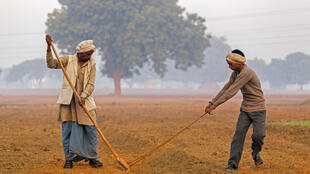 Un fermier et son fils travaillent leur terre agricole.