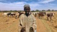 Shugaban kungiyar manoma da makiyayan jamhuriyar Nijar kan yarjejeniyar kiwo da Benin