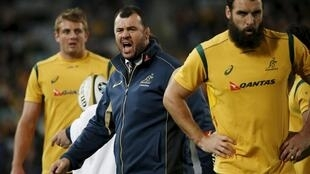 Michael Cheika's Australia are the first side other than New Zealand to win the Rugby Championship.