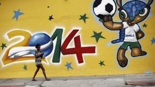 Linh vật Fuleco của Cúp bóng đá thế giới Brasil 2014 - Reuters