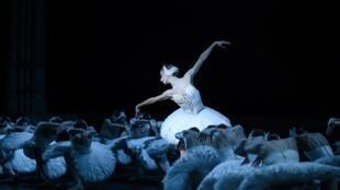 «Лебединое озеро» в постановке Рудольфа Нуриева на сцене Парижской оперы. Одиллия: Мириам Улд-Брахам, Зигфрид: Поль Марк. Март 2019 г.