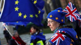 Người biểu tình Anh phản đối Brexit trước Nghị Viện tại Luân Đôn, ngày 16/01/2018.