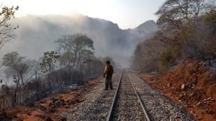 Un bombero observa la devastación causada por las llamas en el sector de Roboré, Departamento de Santa Cruz, Bolivia. El 19 de agosto de 2019