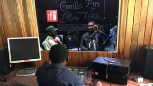 Le studio de Gorilla FM est situé dans le parc national de Kahuzi-Biega.