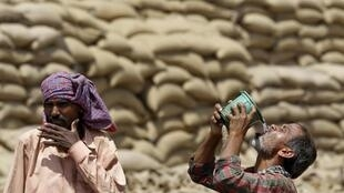 A labourer drinks water as another looks on, on a hot summer day at a grain market in Chandigarh, India 19 April 2016.