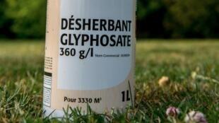 A bottle of weedkillercontaining glyphosate in Godewaersvelde, northern France