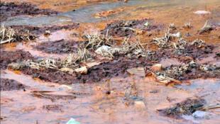 Một cảnh ô nhiễm tại Trung Quốc (DR).