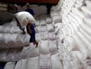 Virus corona – Việt Nam: Nội bộ chính quyền bất đồng về quyết định tạm ngưng xuất khẩu gạo