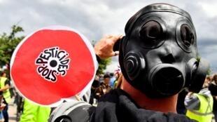 Un militant anti-pesticides, lors d'une manifestation à Bordeaux, le 18 mai 2019.
