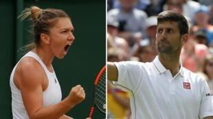 Zakarun gasar kwallon tennis da Wimbledon a 2019, Simona Halep da Novak Djokovic.