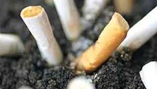 Cigarettes created with tobacco which damaging smokers health