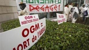 Protesto contra o milho transgênico da Monsanto em Lyon em janeiro de 2012 .