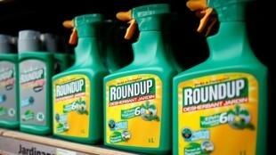 Agrotóxico Roundup, o glifosato, desapareceu das prateleiras francesas e agora só pode ser utilizado por profissionais.