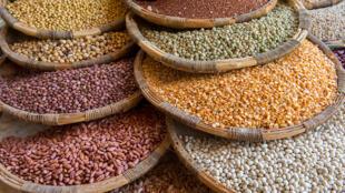 Leguminosas como feijões, lentilhas, ervilhas, soja e grão-de-bico são ricas em ferro, zinco, cálcio, fósforo, potássio, vitaminas do complexo B e ácido fólico.
