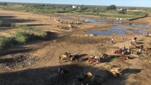 Le fleuve Mananbovo asséché dans la ville de Tsihombe, dans le Grand Sud de Madagascar.