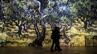 В «Мастерской света» можно прогуляться среди вангоговских олив