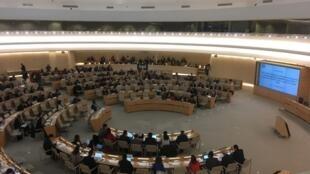 Sesión del  Grupo de Trabajo Abierto del Consejo de los Derechos del Hombre de la ONU, Ginebra Suiza, octubre 2017