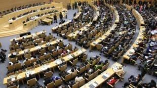 Assemblée générale de l'Union africaine à Addis Abeba, le 30 janvier 2014.