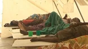 Epidemia de cólera em Moçambique faz novas vítimas na províncias de Tete.