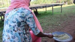 Madame Madiye torréfie le café avant la cérémonie traditionnelle.