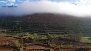 La culture en terrasse se pratique dans les régions de montagne pour permettre l'irrigation par inondation, comme ici dans la vallée de l'Ourika dans l'Atlas marocain.