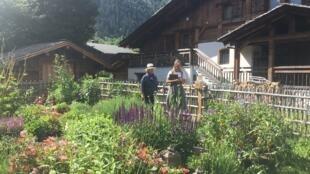 Hermitage Paccard 等旅馆在花园中种植调料植物