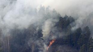 Лесной пожар в окресностях Красноярска, 21 апреля 2011.