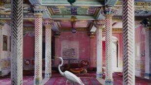 Flight to Freedom, Durbar Hall, Junha Mahal, Dungarpur (2010)