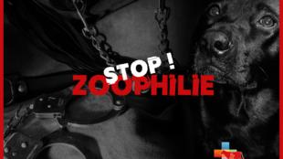 Campanha quer endurecer o combate à zoofilia na França.