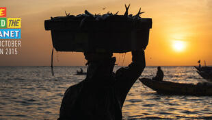 Slow Fish promueve la pesca sostenible.