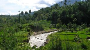 Garut, West Java, Indonesia.