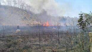 Foco de incêndio no Território Indígena de Arariboia, no Maranhão.