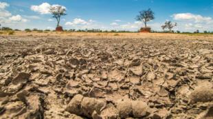 Cas de grande sécheresse au Botswana.
