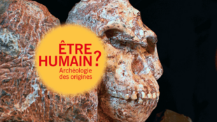 Illustration de l'INRAP pour le colloque «Etre humain? Archéologie des origines» qui a eu lieu les 9 et 10 novembre 2018.