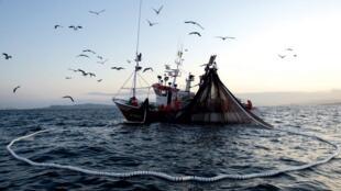 Barco pesquero de cerco, en Vigo, Galicia, España