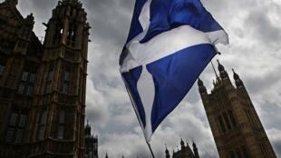 """Đông đảo người dân xứ Scotland bỏ phiếu """"ở lại"""" Liên Hiệp Châu Âu."""