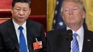 دونالد ترامپ، رئیس جمهوری آمریکا و شی جین پینگ، رئیس جمهوری چین.