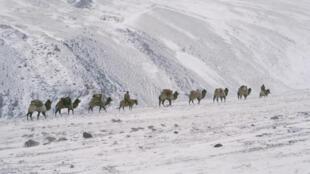Caravane kirghize dans le corridor de Wakhan, photo 1971.