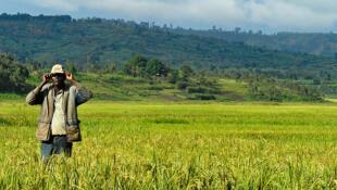 À qui appartient cette terre ? C'est la question à laquelle la CNTB au Burundi doit répondre quand le propriétaire, chassé par la guerre, rentre au pays et retrouve son bien dans d'autres mains.