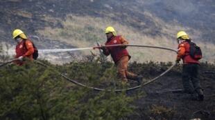 Des pompiers tentent de combattre le feu qui ravage le parc national Torres del Paine au Chili.